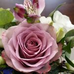 Rose Essential Oil in Creation Essence